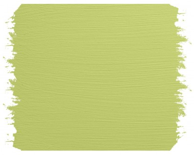 GREEN TEA 500ml